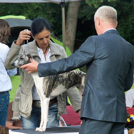 Audrey auf dem Puppytag in Eicks